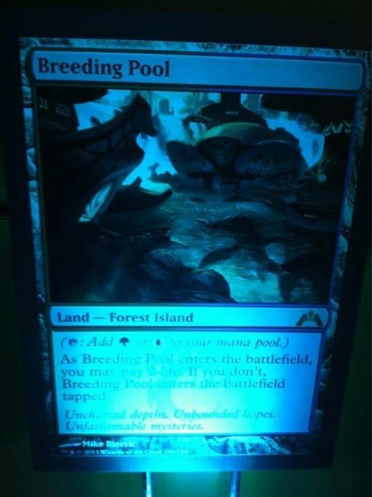 BreedingPool