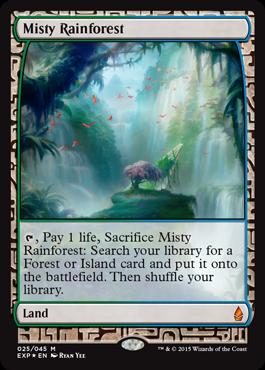 霧深い雨林