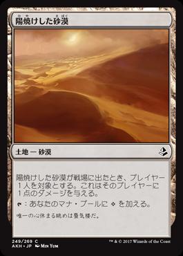 249陽焼けした砂漠